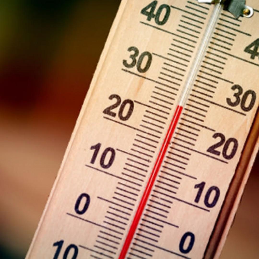 Термометры оптом